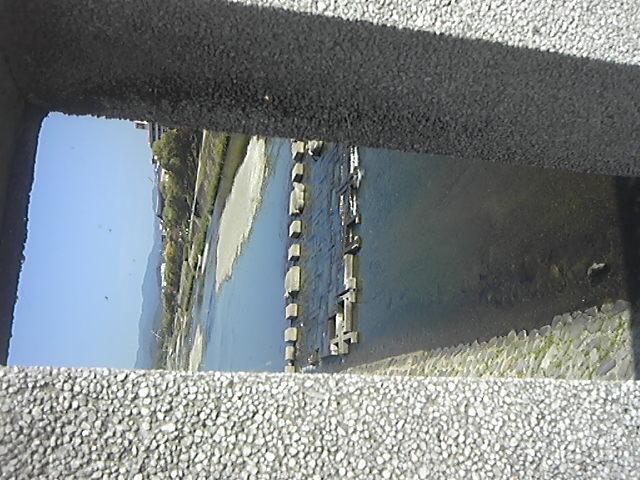 橋の欄干の蜘蛛の巣ごと、鴨川を撮ってみる。